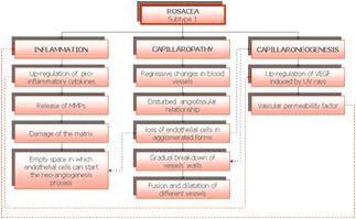 Rosacea Schematic